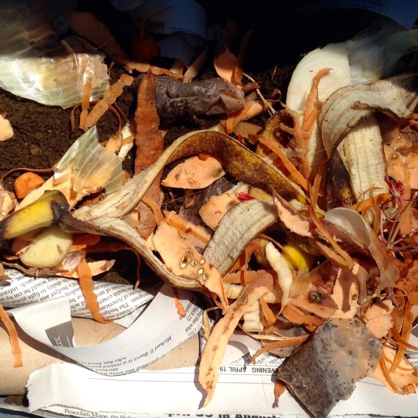Layers of kitchen scraps.