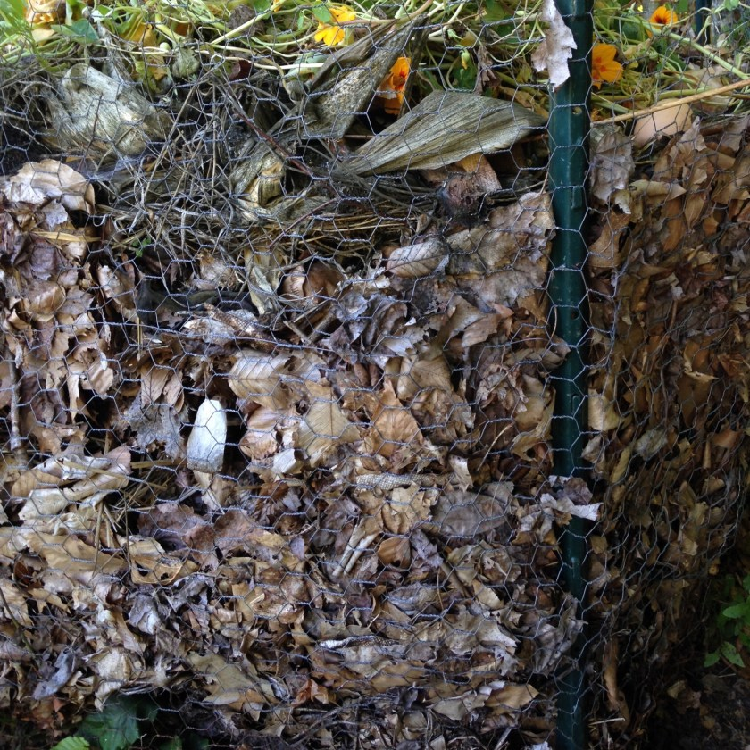 This compost pile needs turning!