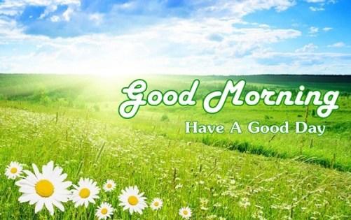 Good Morning wishes Shayari In Hindi