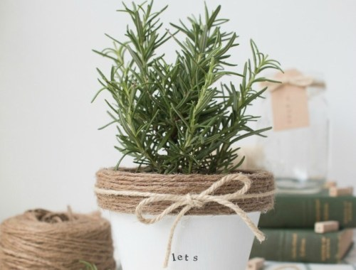 Come check out these 5 great ideas for Mothers' Day including this cute pot plant from the Beauty Dojo. Find more crafts, DIYs and recipes at Ever So Britty.