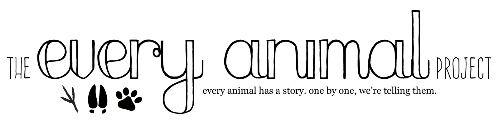 The Every Animal Project