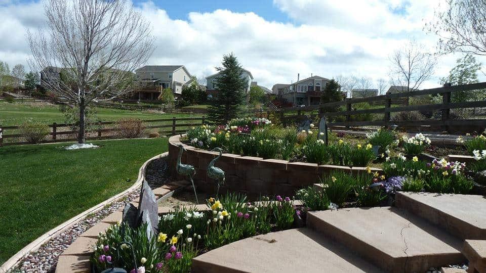 Mary Hunt's garden in spring
