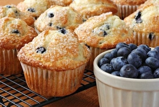 Ordinary blueberry muffins