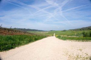 cammino di santiago da sola