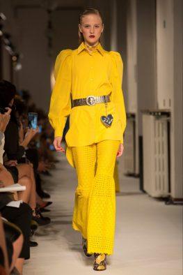 primrose yellow daizy Shely
