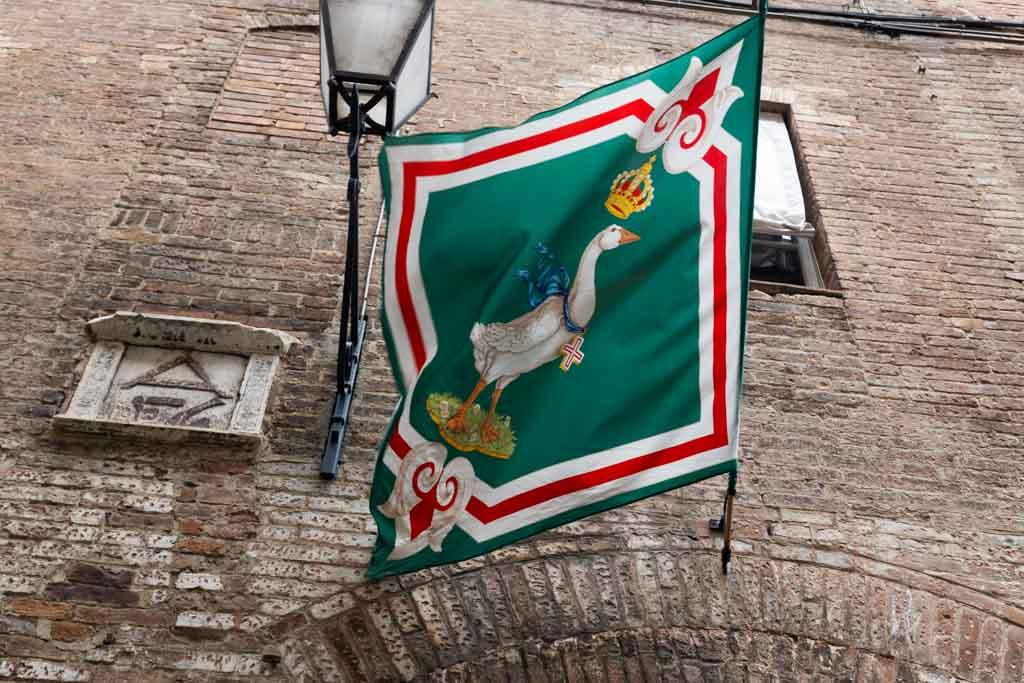 Palio di Siena contrada dell'oca