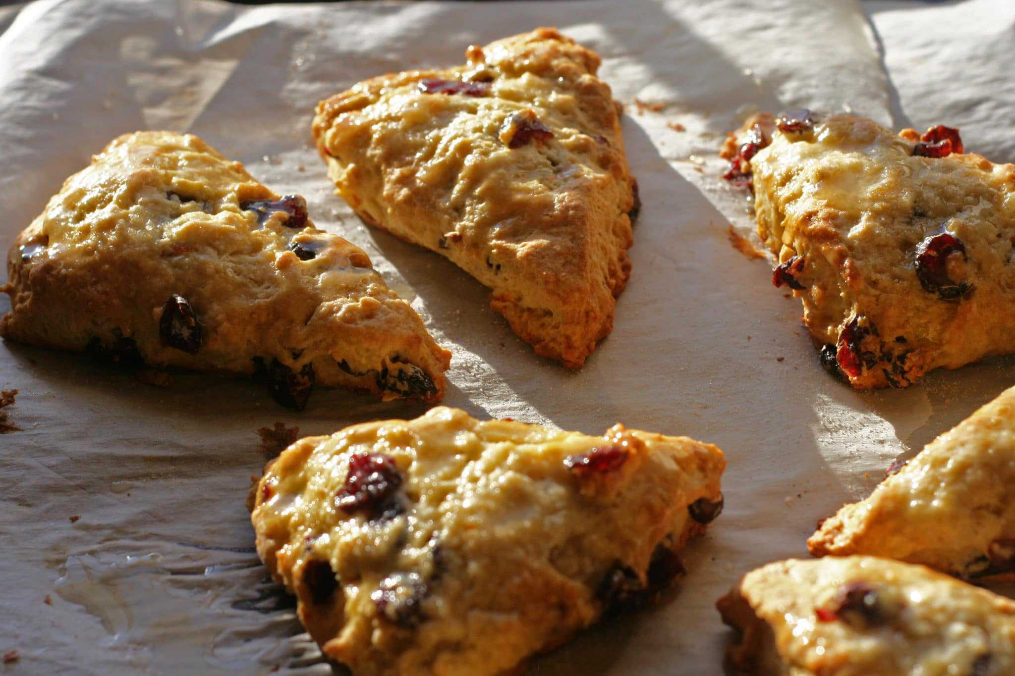Glazed Cranberry Orange Scones - Everyday Eileen