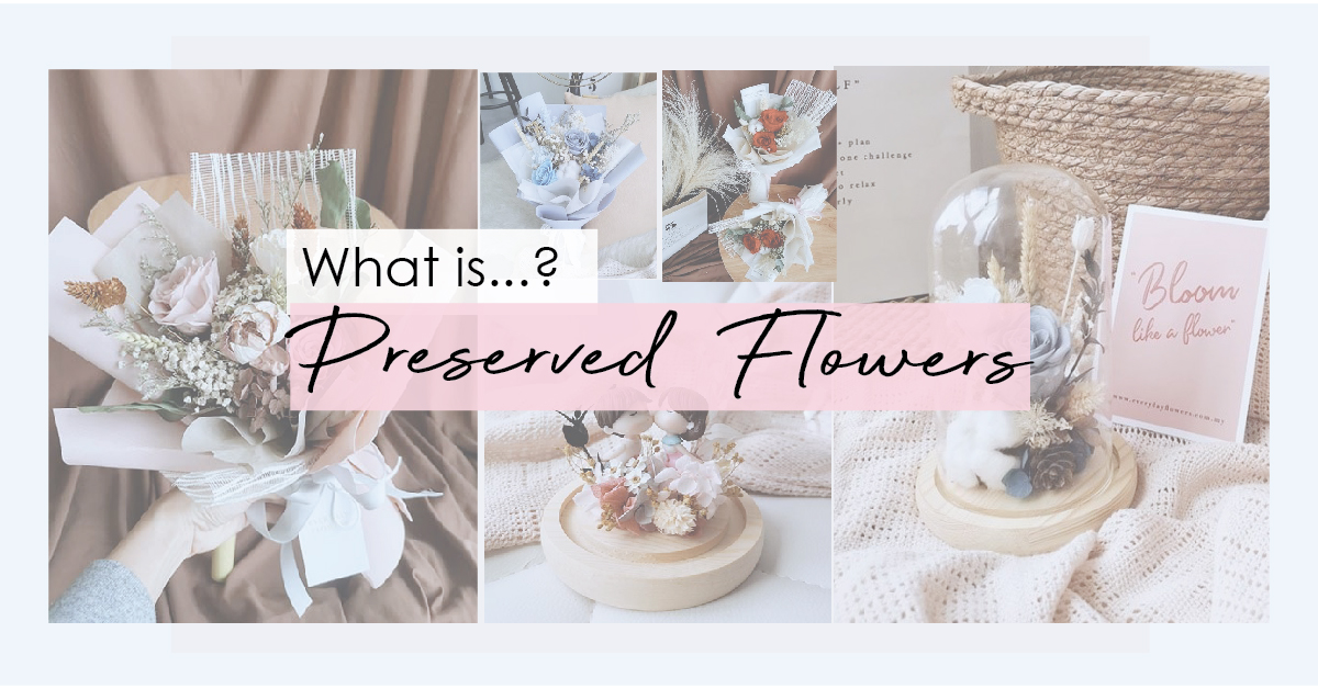 About: Preserved Flowers