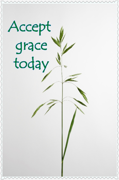 Accepting Grace  #MondayMusings #1000Speak