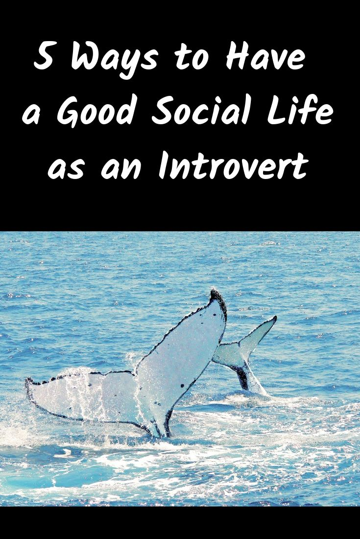 5 Ways to Have a Good Social Life as an Introvert