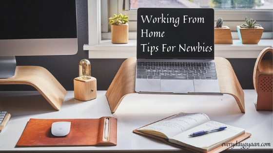 Working From Home Tips For Newbies