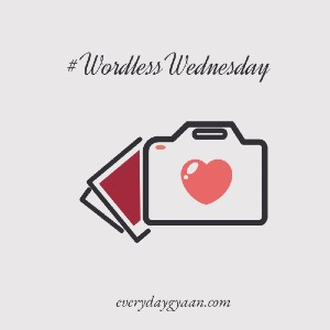 wordless wednesday on everyday gyaan