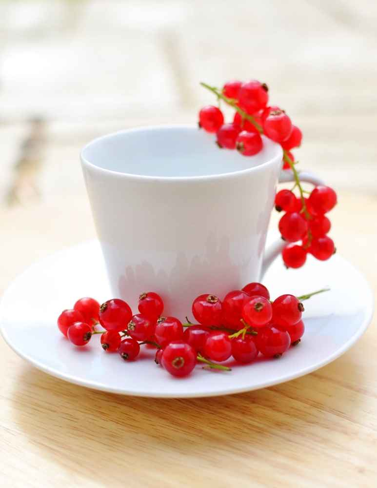 White cup and saucer with redcurrants on wooden surface.