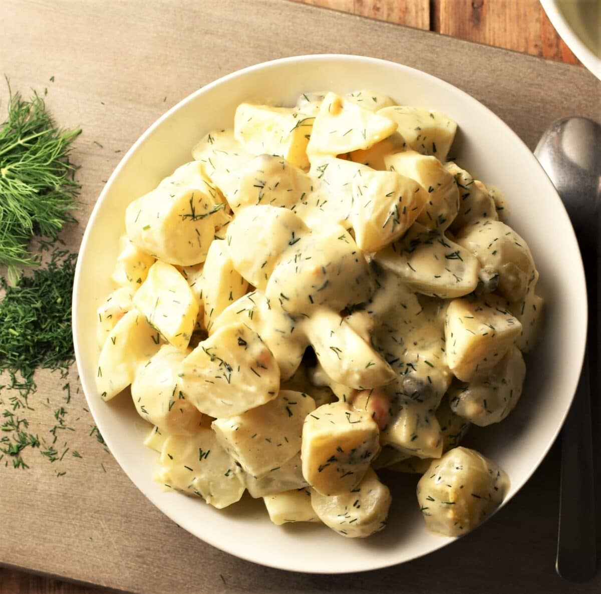 Creamy potato dill salad in white bowl with dill to the left.