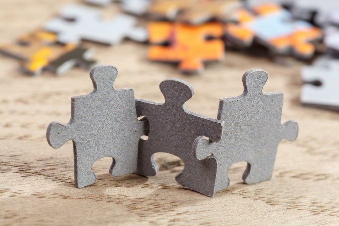 The puzzle of business