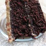 Moist and decadent chocolate cake, smothered with the creamiest peanut butter frosting. The best part is, this is the best chocolate cake with peanut butter frosting! | EverydayMadeFresh.com