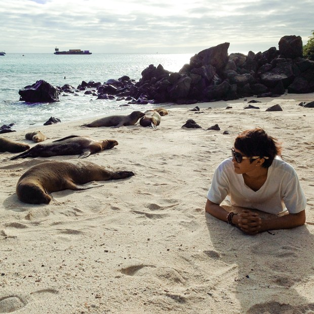 Hanging out with the sea lions of Playa Mann Beach