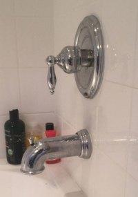 Moen Shower Valve & Faucet Repair | Tampa Plumbing
