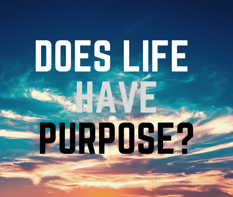 Does Life Have a Purpose?