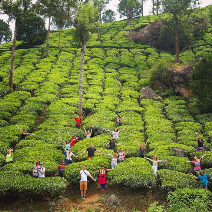 Photo: Jinson Abraham, Kerala Tourism