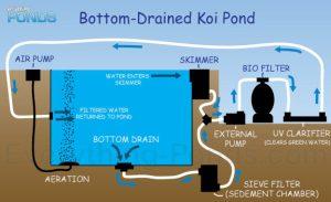 Everything Ponds Complete Pond Kits  EverythingPonds