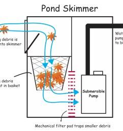 building a koi pond diagram [ 1350 x 1139 Pixel ]