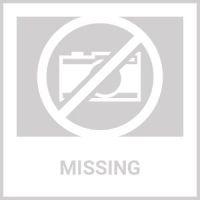 MSU Spartans Team Carpet Tiles - 45 sq ft