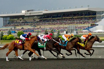 Woodbine Nearctic Stakes