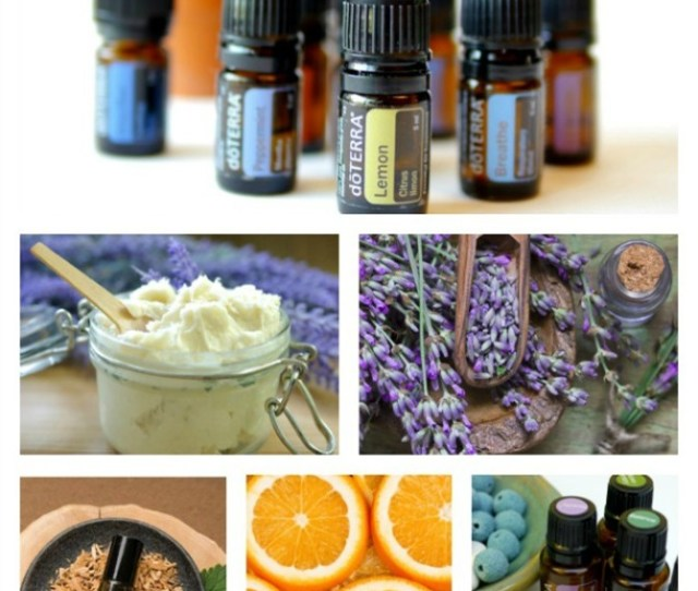 How Can I Start Buying Doterra Essential Oils Wholesale Everythingetsy Com