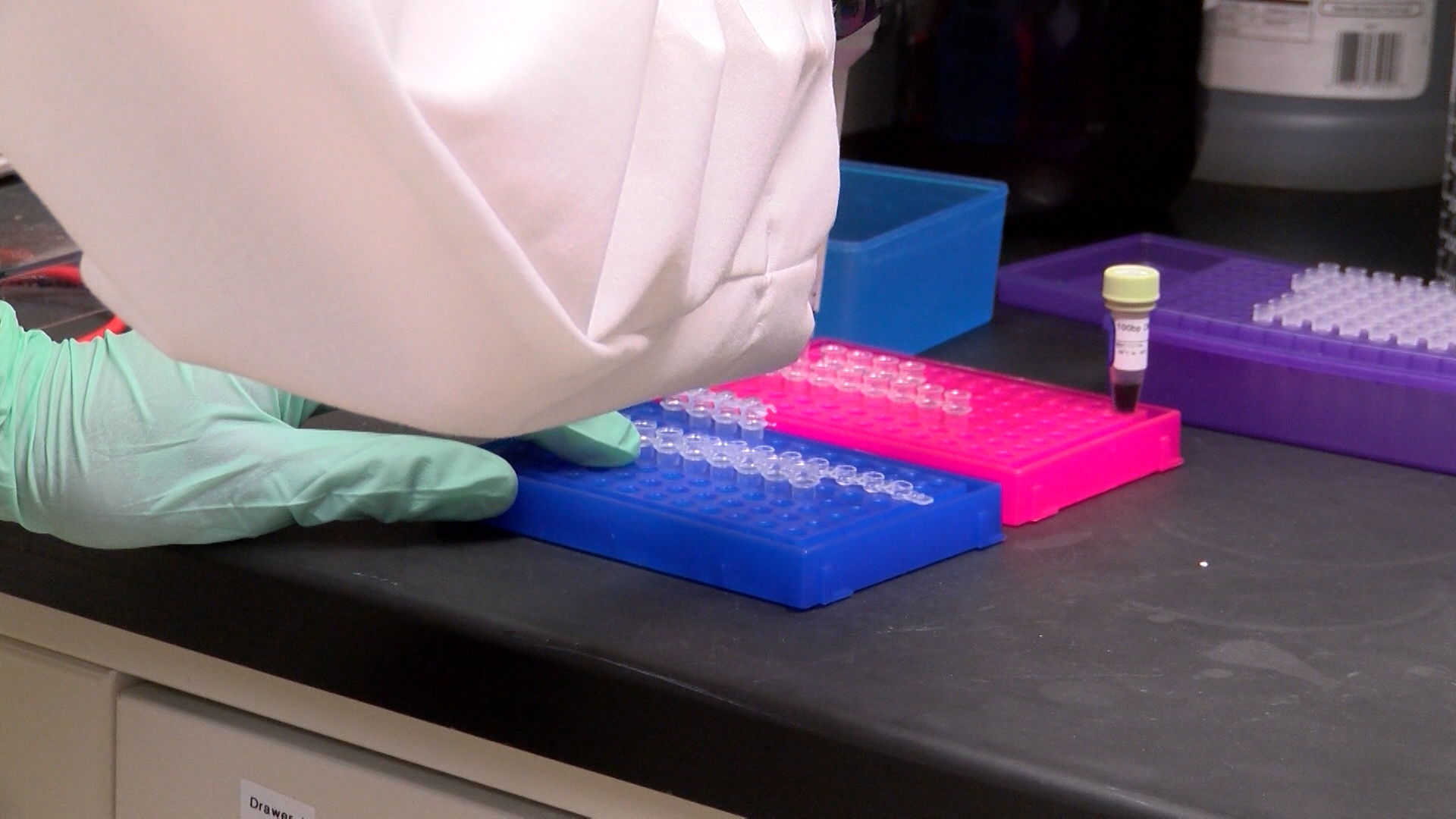 Zika Testing Available In Lubbock Under Certain Circumstances