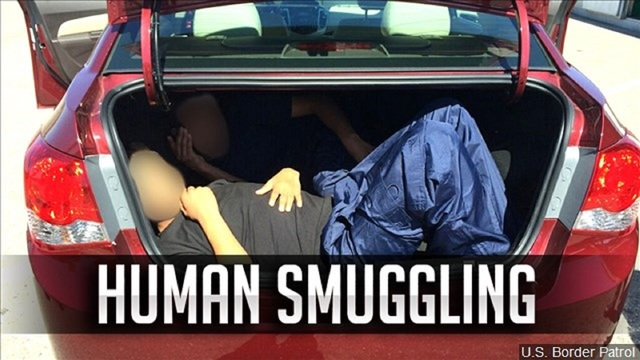Human Smuggling Scurry County