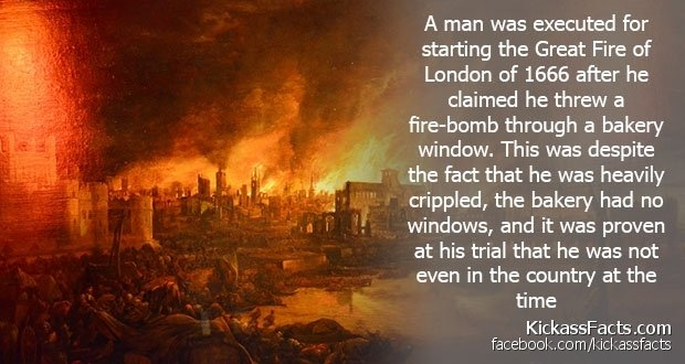 Everything Mixed 24 Mind Blowing Facts They Certainly Didn