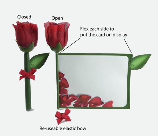 rosecardopen