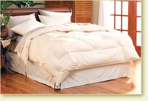 paccoastcomforter