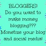 NEW Blogger Sponsorship to Make Money!