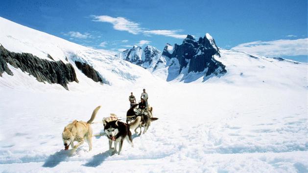disney-cruise-dog-sledding-glacier-flightseeing