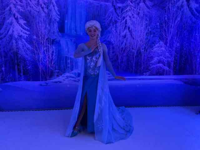 Frozen Meet and Greet Disney Cruise
