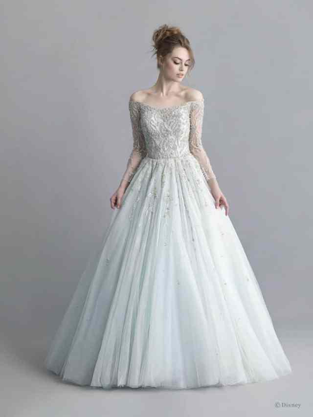 Disney Cinderella Wedding Dress