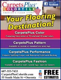 Carpet Plus Color Tile | Tile Design Ideas