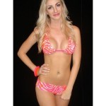 Hot Pink & White Tiger Print Bra & Micro Shorts