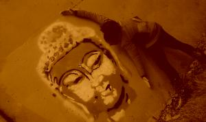 stillness, everything she touches, siddhartha