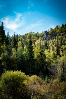 Little Spearfish Trail and Roughlock Falls Photos