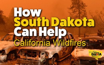 How We Can Help Those Affected by the California Fires