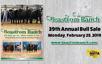 Beastrom Gelbvieh Ranch 39th Annual Bull Sale