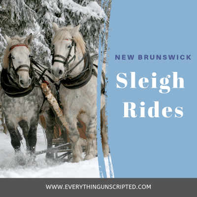 Winter Sleigh Rides in New Brunswick, Things to do in New Brunswick, NB day trips