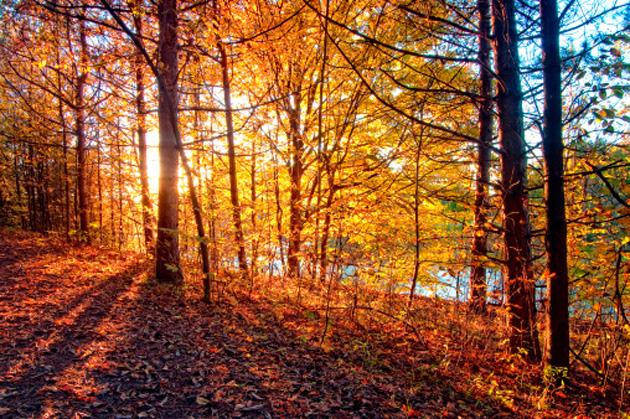 Early Fall Hd Wallpaper 7 Fabulous Fall Getaways Everything Zoomer Boomers