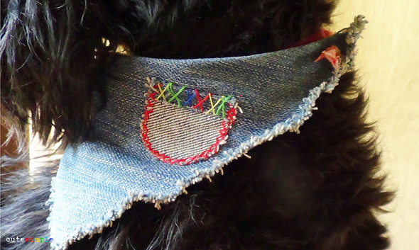 dog-and-jeans-7