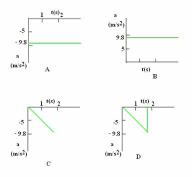 Graphical Representation, Class 11 Physics Sample Papers