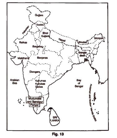 Pastoralists in the Modern World, Class 9 History NCERT