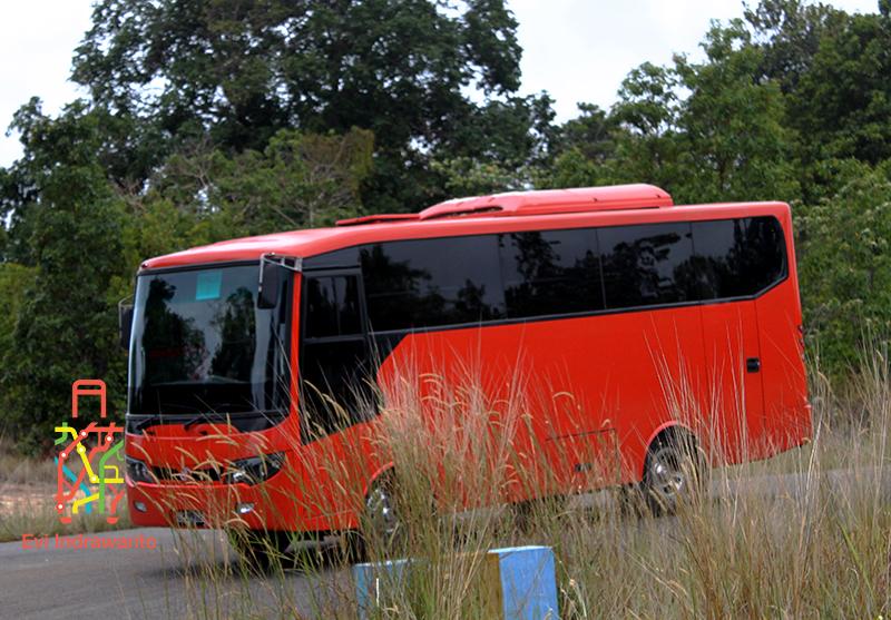 Bus untuk mudik dan pulang